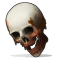 Human Skull icon.png